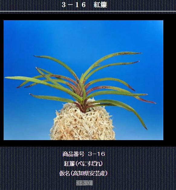 http://www.fuuran.jp/3-16html