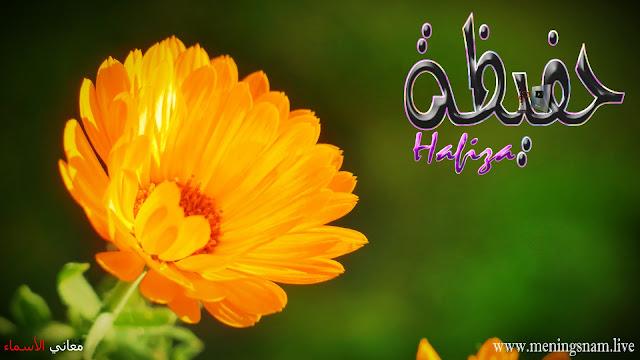 معنى اسم حفيظة وصفات حاملة هذا الاسم Hafiza,
