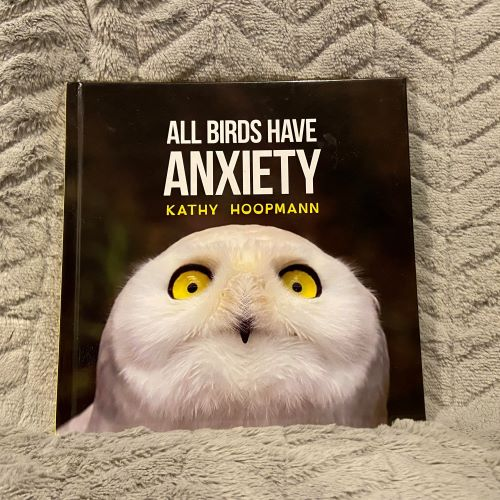 Front cover of All Birds Have Anxiety, featuring a snowy white owl