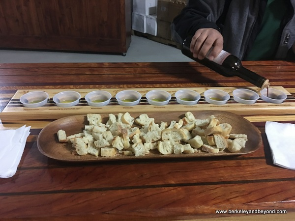 olive oil tasting at Chacewater Winery and Olive Mill in Kelseyville, California