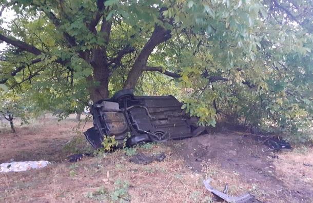 У Київській області п'яний підліток влаштував смертельну аварію