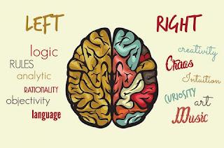 Otak Kiri Vs. Otak Kanan: Bagaimana Orang Mendominasi?