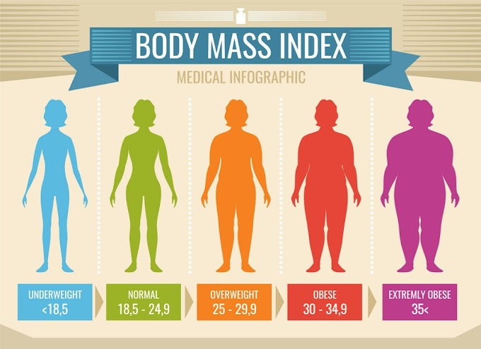 Calculate Your Body Mass Index: BMI Calculator for Men & Women