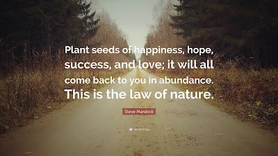Steve Maraboli Quotes Happiness