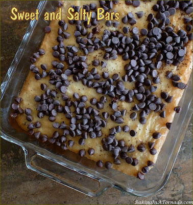 Sweet and Salty Bars, for those sweet cravings, and the salty ones too. | Recipe developed by www.BakingInATornado.com | #recipe #chocolate