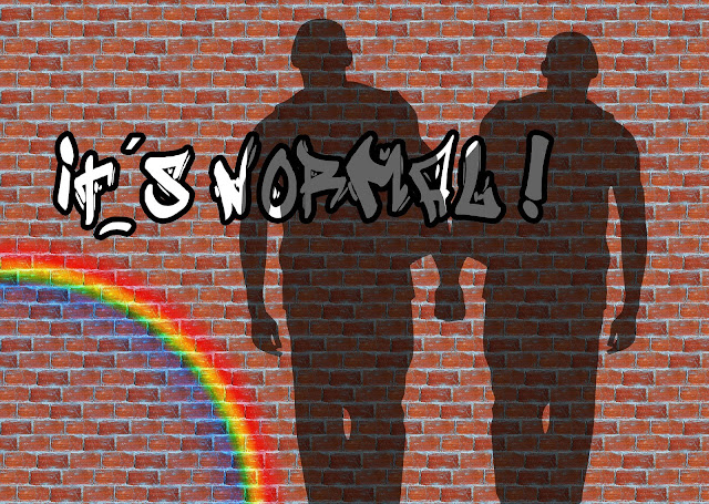 """A imagem contém: muro com sombra de homens homossexuais dando as mãos, arco-íris e a frase """"isto é normal"""""""