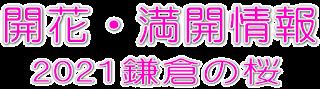 2021桜の開花予想・開花状況