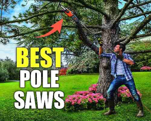 Best Pole Saws in 2020|Review and Buying Guide