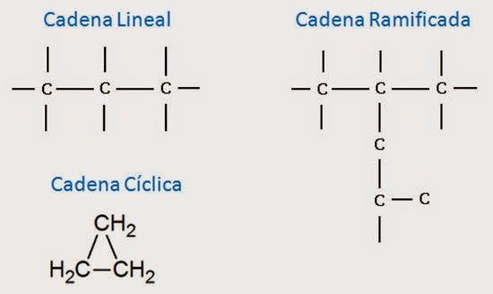 Tipos De Carbono Y Cadenas Ciencias Química Y Biología