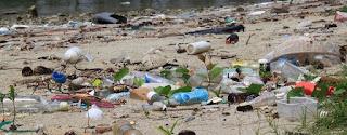 Plastikmüll an der Küste