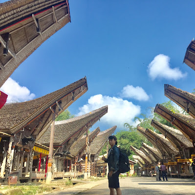 Solo Backpacking to Toraja 2.0:  Torajanese Funeral, Met Jesus in Statue, Drank Awan