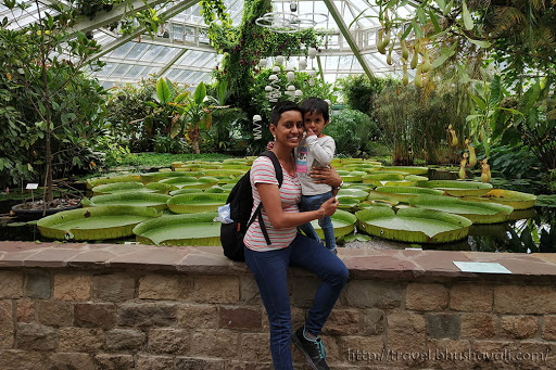 Plantentuin Meise Botanic Garden Brussels Belgium
