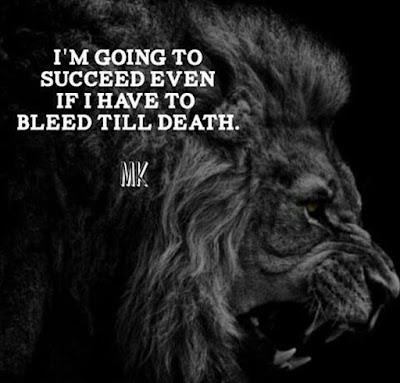 Alpha Lion Quotes