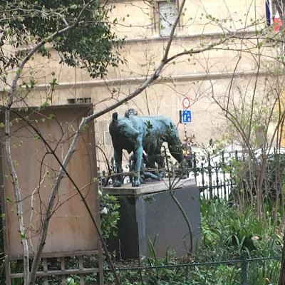 Lupa Capitolina Square Painlevé