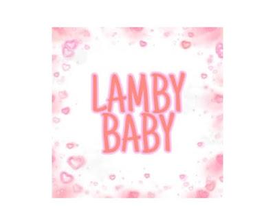 Lowongan Kerja Di Lamby Baby Bandung