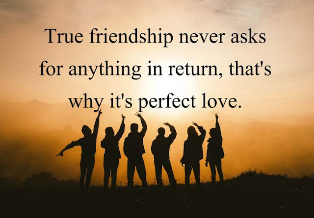 Best love quotes for her/ him with photo