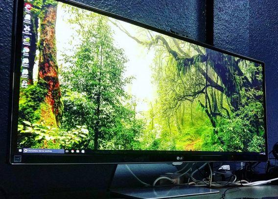 1. Monitor Display