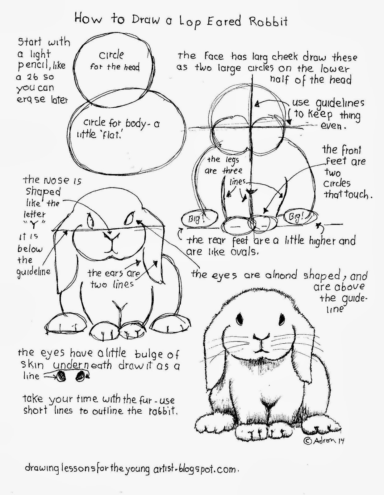 How To Draw Worksheets For The Young Artist How To Draw A Lop Eared Rabbit Free Worksheet