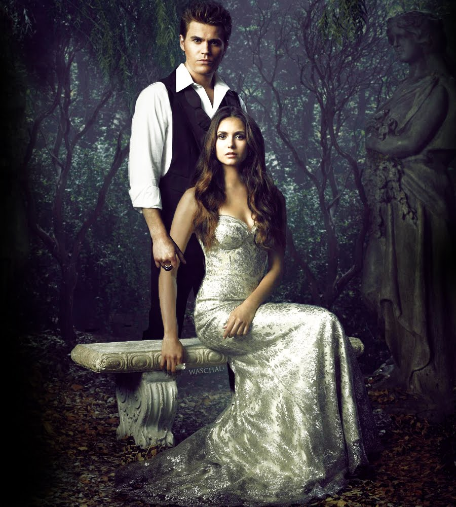 Stelena's Diaries: Stefan And Elena Portray