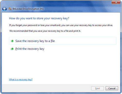 bitlocker drive encryption pendrive with password