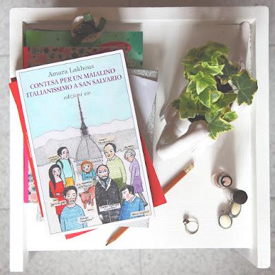 """Recensione libro """"Contesa di un maialino italianissimo a San Salvario"""""""