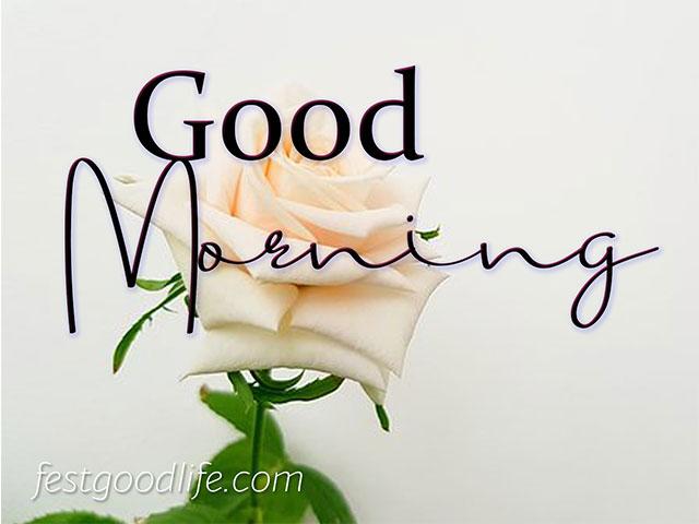 instagram ke liye good morning photo download