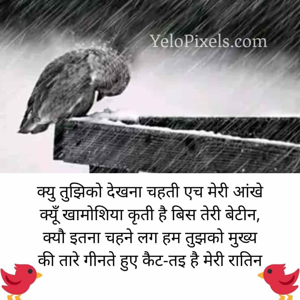 save-bird-best-shayari-in-hindi-image
