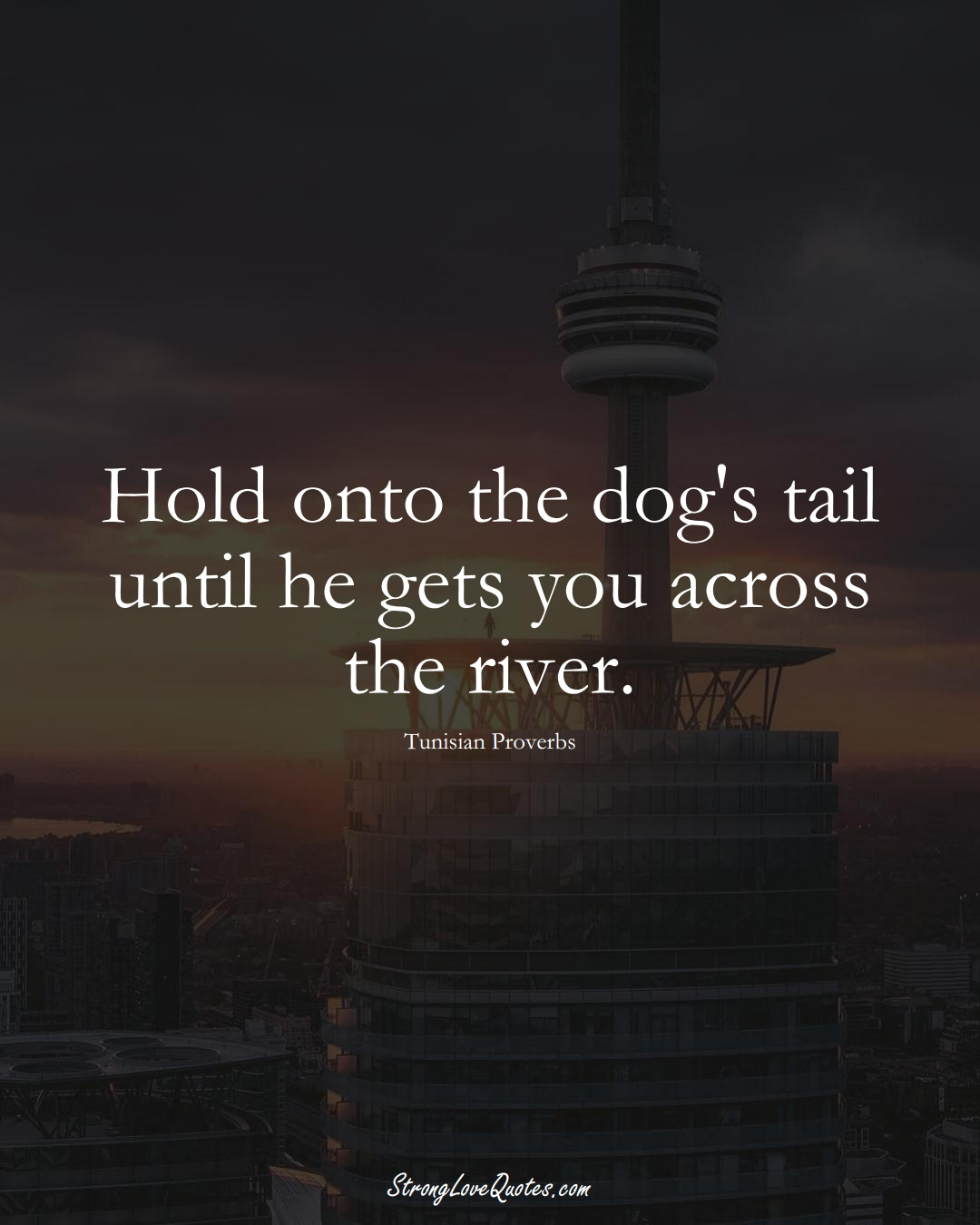 Hold onto the dog's tail until he gets you across the river. (Tunisian Sayings);  #AfricanSayings