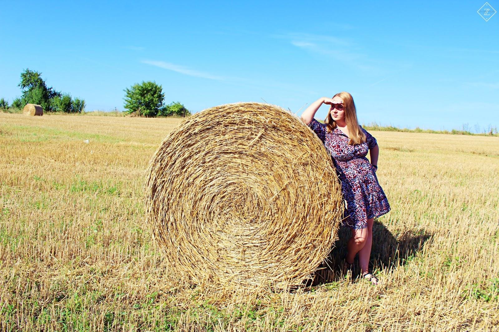 Rozkloszowana sukienka z rękawem 3/4 ALEKSANDRA - Grandio.pl + zniżka na zakupy