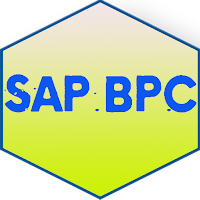 Learn SAP BPC
