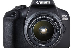 Review Kamera Canon EOS 2000D Paling Keren Buat Hobi Motret