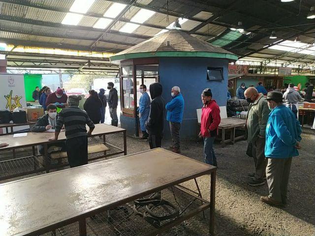 Realizan exámenes de sangre en Ferias Libres y Mercado de Osorno