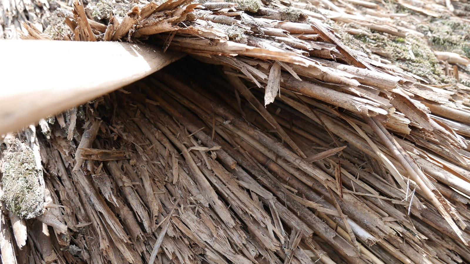 藁 竹 茅: 茅葺き 差茅(葺きはじめ)