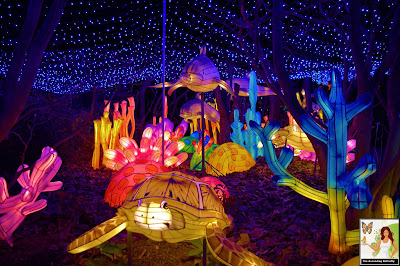 Underwater Fantasy Illuminated Sea Creatures Christmas Carolers Bronx Zoo Holiday of Lights 2019