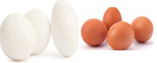 Eggs meaning in tamil, telugu, marathi, kannada, malayalam, in hindi name, gujarati, in marathi, indian name, tamil, english, other names called as, translation