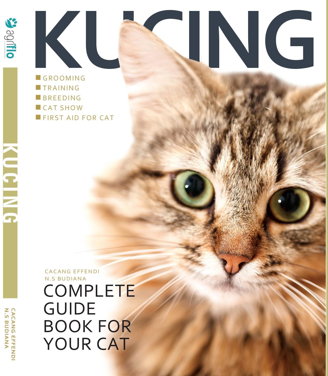 Pengiriman Kucing Antar Kota Pulau Dan Negara Sukses