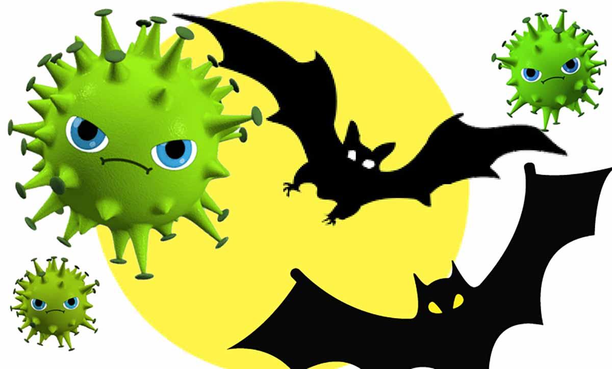 Откуда взялся коронавирус? Теории происхождения коронавируса