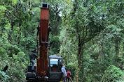 Ditreskrimsus Polda Aceh Amankan Pelaku Ilegal Logging di Hutan Tangse