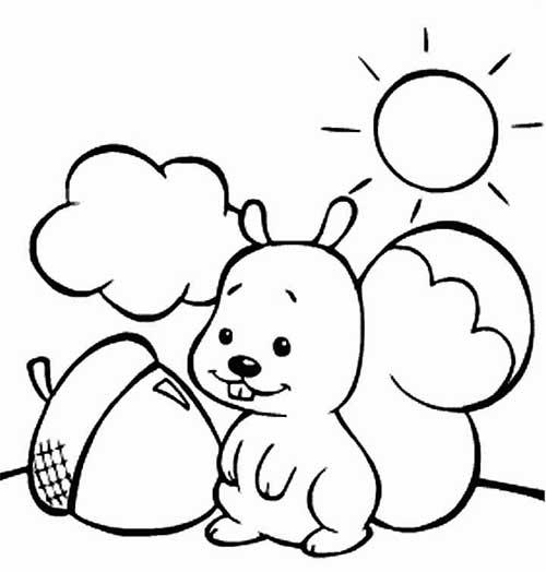 Muitos Desenhos De Esquilo Para Colorir Pintar Imprimir Esquilo