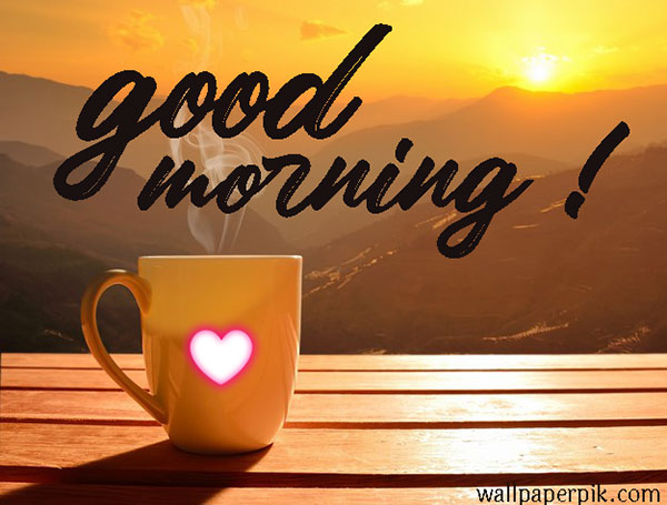 good morning images free download for whatsapp hd download good morning images hindi good morning flower images free download good morning all images cup tea stream