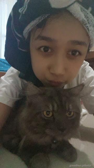 Achan dan kucing