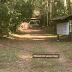 Invasão de javaporcos em Santa Rita do Passa Quatro ameaça área de preservação