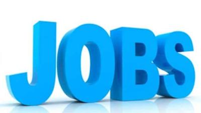 IBPS RRB Jobs 2021
