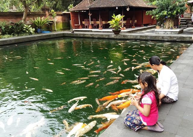 Что посмотреть на Бали. .Храм Священной воды Тирта Эмпул.