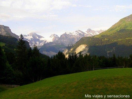Vistas desde el tren subiendo al Jungfrau, Suiza