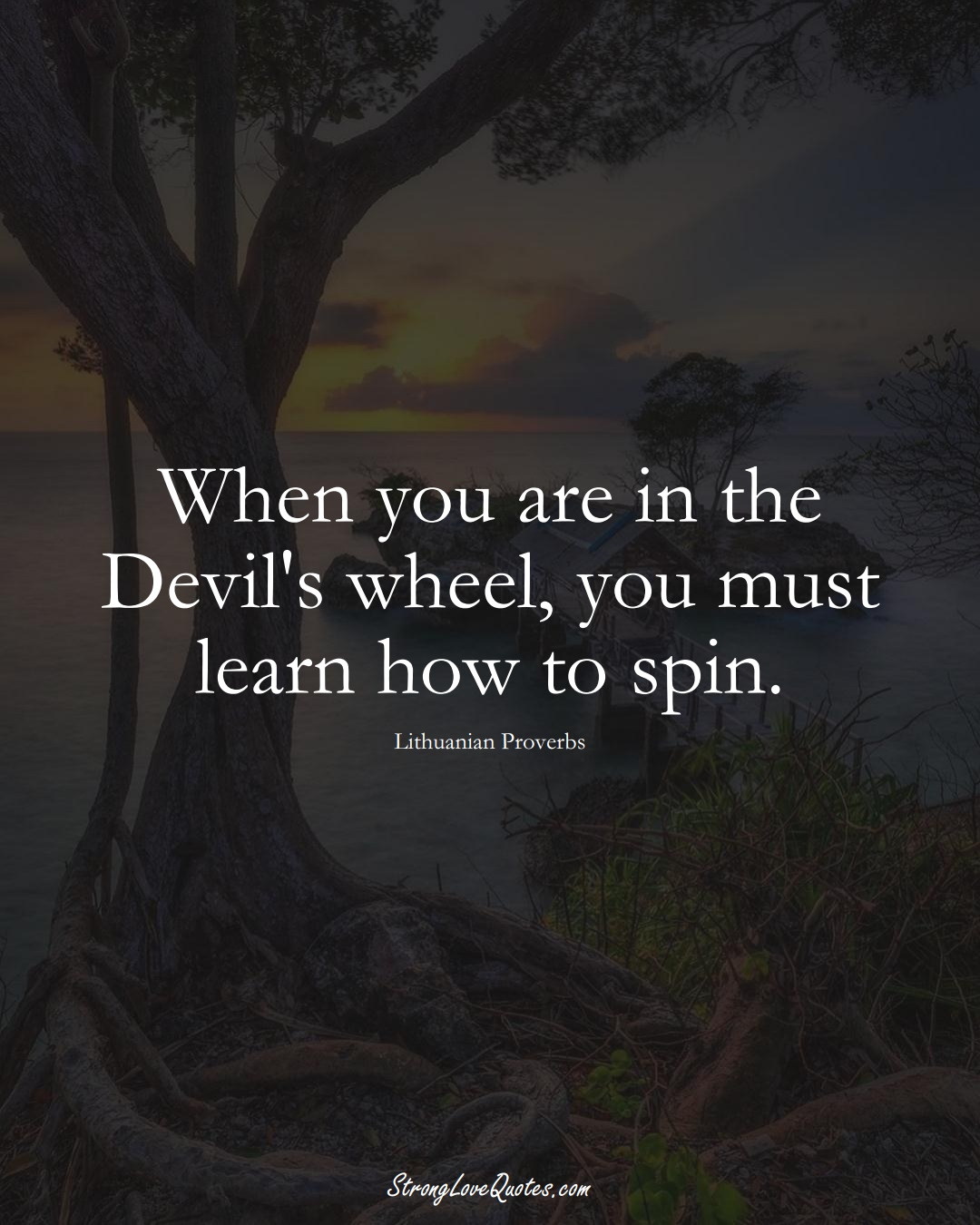 When you are in the Devil's wheel, you must learn how to spin. (Lithuanian Sayings);  #AsianSayings