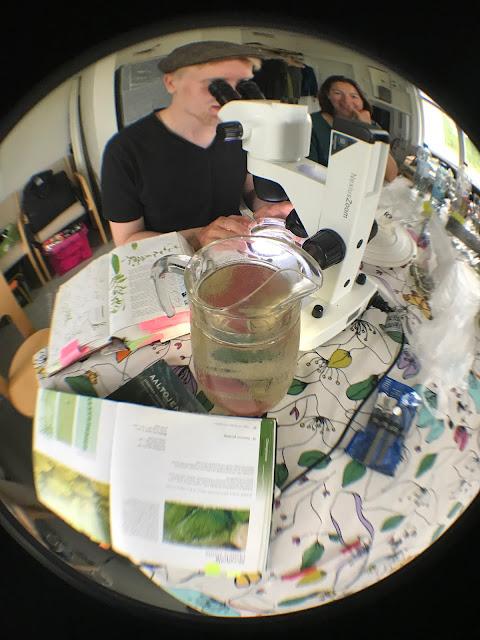 Täyden työpöydän keskellä iso vesikannu.