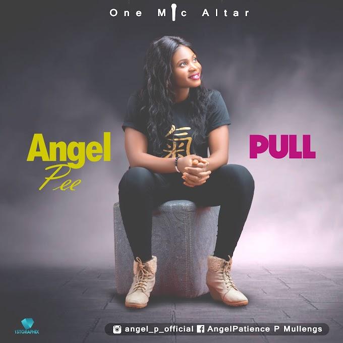 New Music :: Pull - Angel Pee