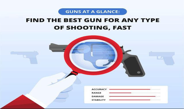 Guns at a Glance: Find the Best Gun for Any Type of Shooting, Fast! #infographic