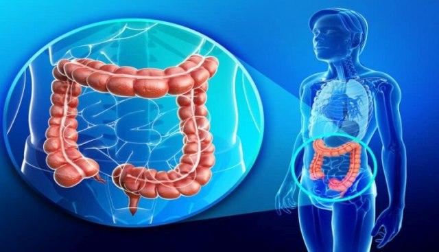 «Ο θάνατος του ανθρώπου αρχίζει από το στομάχι – Πώς θα καταλάβετε ότι κάτι δεν πάει καλά» Ρώσος βιολόγος κρούει τον κώδωνα!